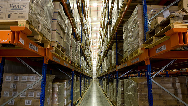 Cold Storage Warehouse in Dubai | Global Shipping & Logistics LLC