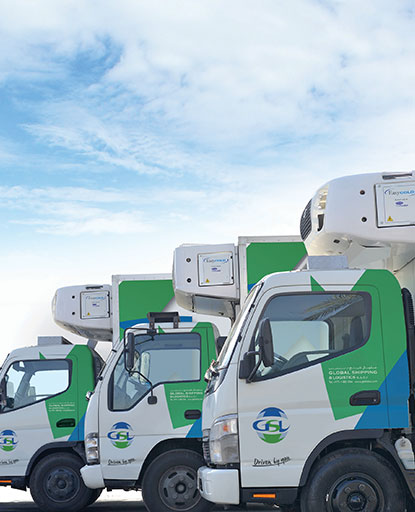 Logistics and Distribution Companies in Dubai | Global Shipping & Logistics LLC